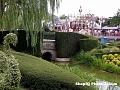 Disneyland 24