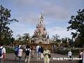 Disneyland 6