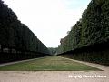 Gradinile din Versailles 11