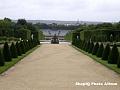 Gradinile din Versailles 23